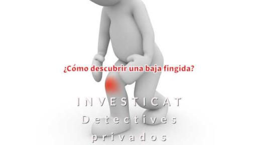 Baja Fingida detective privado
