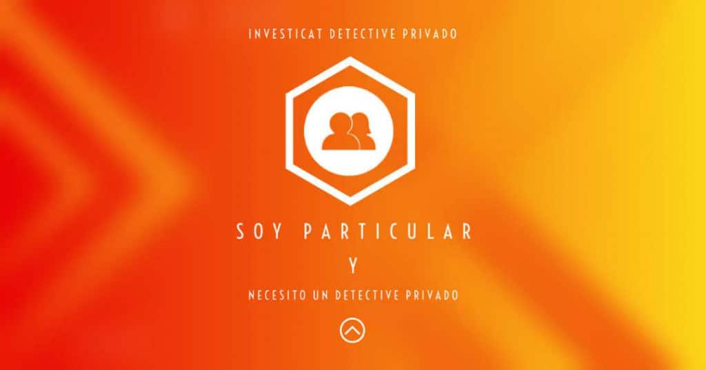 detective privado particular